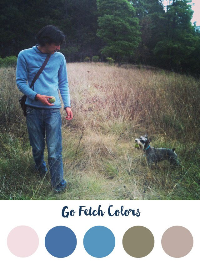Go Fetch Color Palette - RKA ink