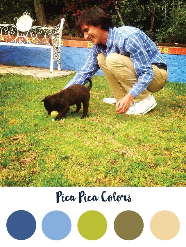 Pica Pica Color Palette - RKA ink