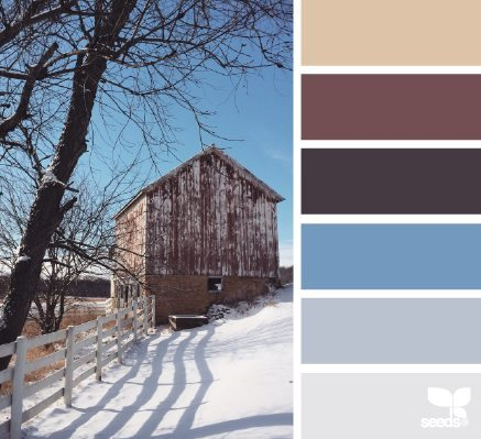 Winter Hues color palette by Design Seeds